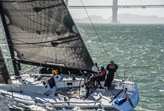 team pickled herring off the pier (pbo31) Tags: sanfrancisco california nikon d810 color september 2017 summer goldengatenationalrecreationarea blue bay boury pbo31 sail rolex bigboatseries fortmason pier2 herbstpavillion race yacht harbor water sport teams marine sailing event annual 53rd goldengatebridge 101 bridge team crew group sunset westcoast