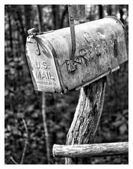 Anglų lietuvių žodynas. Žodis mail reiškia I1. n paštas;2. v siųsti paštu II n šarvai; the mail fist grasinimas karine jėga lietuviškai.