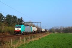 Kessel-Cobra (trainspotter64) Tags: zug eisenbahn train spoorwegen sncb nmbs railroad