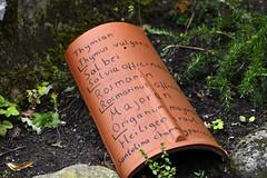 StillLeben (Michael Döring) Tags: gelsenkirchen bismarck zoomerlebniswelt zoo stillleben bauerngarten afs200500mm56e d850 michaeldöring
