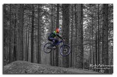 You don't need wings to fly. (R0BERT ATKINSON) Tags: downhillmountainbiking mountainbiking hamsterleyforest weardale trees blackandwhite durham jump northeastengland robatkinsonphotography nikond5100