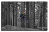 You don't need wings to fly. (R0BERT ATKINSON) Tags: downhillmountainbiking mountainbiking hamsterleyforest weardale trees blackandwhite durham jump northeastengland robatkinsonphotography nikond5100