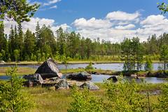 IMG_3079-1 (Andre56154) Tags: schweden sweden sverige see lake wasser water ufer wolke cloud himmel sky landschaft landscape stein stone forest
