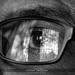 Eye and Beyond