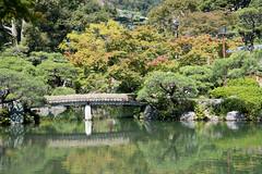 Sorakuen (相楽園) (Hideki Iba) Tags: green nikon d850 outdoor kobe japan hyogo 2485 leaves yellow red