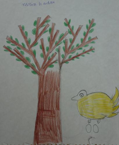 dessin de Nasrin sur l'argan