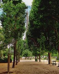 Shy iron woman (Alain Dutertre) Tags: tour eiffel tower champsdemars champs de mars paris trees arbres parc park