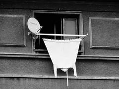 bat (ignatignatov.com) Tags: blackandwhite blackwhite bnw bw bathrobe laundry hanging monochrome