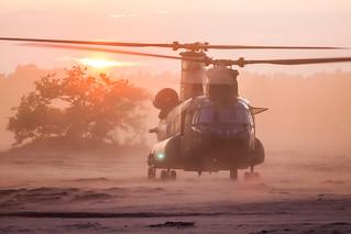 GLV- 5 2017 : RNLAF CH-47D D-101
