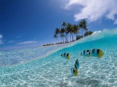 41 download gambar pemandangan pantai hd HD Terbaru