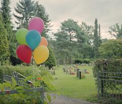 (Udrian) Tags: makina plaubel 67 670 fuji pro 400h medium format 120mm 80mm 28 nikkor nikon analog film graveyard balloons cemetery irony norway oslo life death