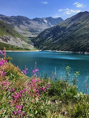 Fleurs et lac de montagne (explore 26/08/2017) (pileath) Tags: randonnées blue green holydays vacances flowers fleurs montagne lac