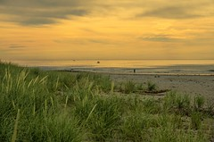 August Morning In Vacationland (Bud in Wells, Maine) Tags: maine beach wells drakesisland summer morning fishing dunegrass coast newengland vacationland
