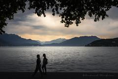 Le lac (Bertrand Thiéfaine) Tags: été nikond750 silhouette eau lac lacdannecy montagne 2017 hautesavoie annecy feuillage nuages