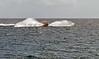 Water Craft (Jeffrey Neihart) Tags: jeffreyneihart nikon nikond5100 nikon1855mm yacht yachts seadoo sailboat sailboats sailing
