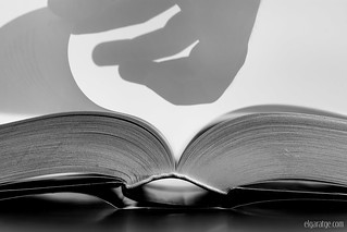 Literary curves [Explore]