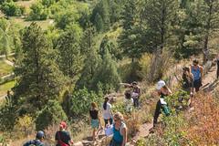 _JRK1152.jpg (CAP VRC - University of Colorado-Denver) Tags: planing murp plantsecology lairothebearpark plants parks mouintains fall september austintroy