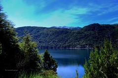 Lago Guglielmo. Patagonia Argentina. (luisarmandooyarzun) Tags: autofocus sky cielo azul blue agua sudamérica sur photography paisaje panorama lake lago landscape argentina