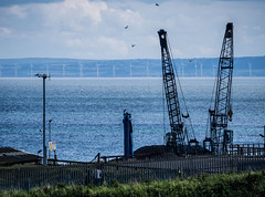 Cranes and Blue seas. (CWhatPhotos) Tags: cwhatphotos blue sky skies wind turbines seaham pier fence gateway gates beach coast north east england uk sea cloudy day art photographs photograph pics pictures pic picture image images foto fotos photography artistic that have which with contain harbour port seas machine machines mechanical working crane cranes
