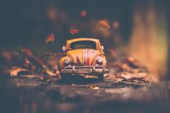 Welcome!!! (cristina.g216) Tags: coche car tiny pequeño otoño autumn hojas leaves fallen marrón brown caída de beetle escarabajo rustic camino way