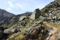 direction Lona (bulbocode909) Tags: valais suisse grimentz sentiers montagnes nature valdanniviers rochers paysages cabanedesbecsdebosson vert