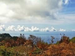 Dove il mare incontra il cielo (lisbethsalander <3 (Olga )) Tags: epomeo natura contemplazione
