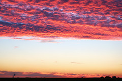 Parallèles (Atreides59) Tags: pentax k30 k 30 pentaxart atreides atreides59 cedriclafrance nature ciel sky nuages clouds nuage cloud rouge red jaune yellow bleu blue nord