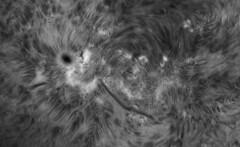 AR2672 on 2017-08-27_PDT_12h19m08s-0506_L_g3_ap584 ip90 (Photon_chaser) Tags: alpha achromat baader asi andover anover25mmblackingfiltermountedinthenosepieceoftelevue4xpowermatetelecentric quark quarkpstdoublestackedetalons quarkmodpstdsetalons sun sunspots solar spicules sunspot spicule ssm174mmachromat w etalon 3dprintedtubeassembly 3dprintedtube 3d daystar prominences protuberance protuberances prominence penumbra pst prusa