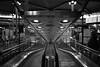 史基浦機場 Schiphol airport (~阿興~) Tags: netherland holland schiphol nikon d750 2485vr 黑白 單色 荷蘭 史基浦機場