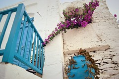 Day 242 : Is for ... The Color Purple (Storyteller.....) Tags: ngc greece island summer vacations house home balcony white blue purple green flowers stone 365 deep365 nikon