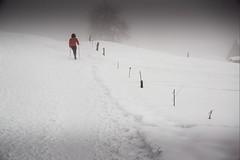 Haute-Savoie, Mont-Blanc, 27 (Patrick.Raymond (5M views)) Tags: alpes combloux megève montagne neige brouillard froid hiver nikon nikonflickraward expressyourself