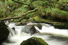 Golitha Falls (Mark's Meanderings) Tags: canoneosdigital400d canon canoneos400ddigital canonlens canonzoomlens water waterfall river longexposure exposure notripod bodmin golithafalls