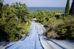 DadIT Park