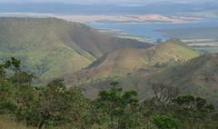 Divisa de Ibiraci e Delfinópolis (Conexão Selvagem) Tags: observaçãodeaves serra canastra parque nacional cerrado aves bird wildlife galito rapina gavião