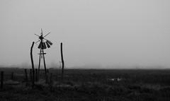 Y antes que sucediera... como era todo? (kchocachorro) Tags: bnw blackandwithe blancoynegro photography phothographer phothoart artphoto desolation landscape outdoor