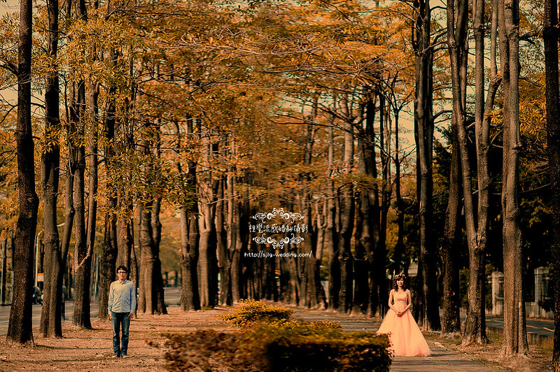 台中,婚紗攝影,中興大學,外拍,校園,景點