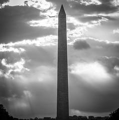2017.09.17 DC People and Places Washington, DC USA 8846