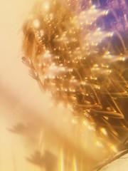 oscars (meeeeeeeeeel) Tags: experimental refraction optics opticaleffects filter iphone iphoneography toy sunlight light esquisito estranho strange weird abstract surreal barbiedoll doll dourado golden bizarre