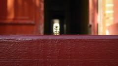 Nano Weed (Theen ...) Tags: brick dark door entrance green inteerior nano paint ramp red tiny wall weed wooden zward