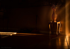 Shaft of Morning Light (JDS Fine Art Photography) Tags: stilllife vase flowervase illumination light dramatic dramaticlight shadows interior inspirational beautiful brown