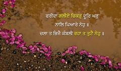 ਫਰੀਦਾ ਗਲੀਏ ਚਿਕੜ 24 (DaasHarjitSingh) Tags: srigurugranthsahibji sggs sikh sikhism ss sikhsm singh satnaam sahib gurbani guru gg granth gobind waheguru