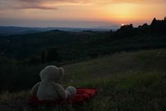 Wo die Reise beginnt... (Nikonfotografie) Tags: nikond7100 nikon sunset sonnenuntergang landscapephotography landscape landschaft abend abendstunden abendstimmung tuscany toskana marcialla
