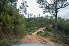 Driving Downhill 6248 (Ursula in Aus) Tags: hilltribeeducationprojects maehongson maesariang thep thailand