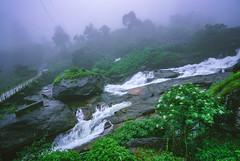 Attukal falls (Dhina A) Tags: sony a7rii ilce7rm2 a7r2 variotessar t fe 1635mm f4 za oss sonyfe1635mmf4 sel1635z attukal waterfalls falls munnar kerala india travel