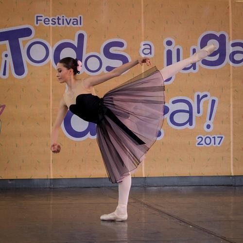 Festival Alas y Raíces