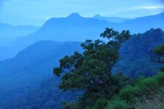 Wild India ! (natureloving) Tags: southindia wildindia nature panorama natureloving nikon d90 nikonafsdxnikkor18300mmf3563gedvr india kerala