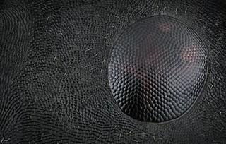 Ant compound eye