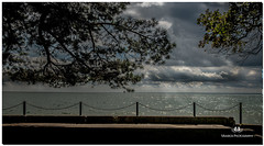 AUGUST 2017 NM1_4806_1034-222 (Nick and Karen Munroe) Tags: weather rain lake lakeshore lakefront lakeontario lakeshoreblvd lakeside water waterfront walkway oakville oakvilleontario oakvillegalleries canada clouds colour color colors colours cloudy cloud ontario outdoors ontariocanada nikon nickmunroe nickandkarenmunroe nature nickandkaren nikon2470f28 nikond750 munroedesignsphotography munroedesigns munroephotography munroe karenick23 karenick karenandnickmunroe karenmunroe karenandnick karen waterscape