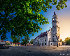 Town Hall of Kaunas,  Lithuania, Europe (dleiva) Tags: 16thcenturystyle architecture baroquestyle blue buildingexterior clearsky colorimage horizontal illuminated kaunas lensflare night nopeople outdoors photography renaissance tower townhall travel whitecolor townhallofkaunas lithuania europe