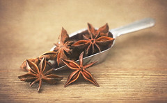 Spoonful of Stars (Through Serena's Lens) Tags: stilllife spice staranise dof textures tabletop indoor spoon metal canon eos6dmarkii macro